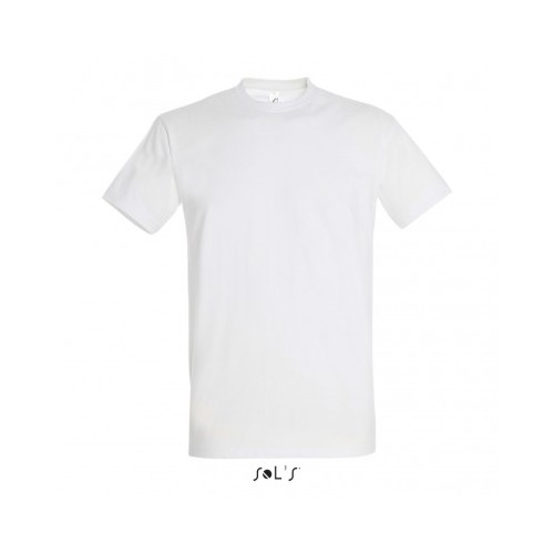 TEE-SHIRT HOMME COL ROND POSSIBILITE TRES GRANDES TAILLES